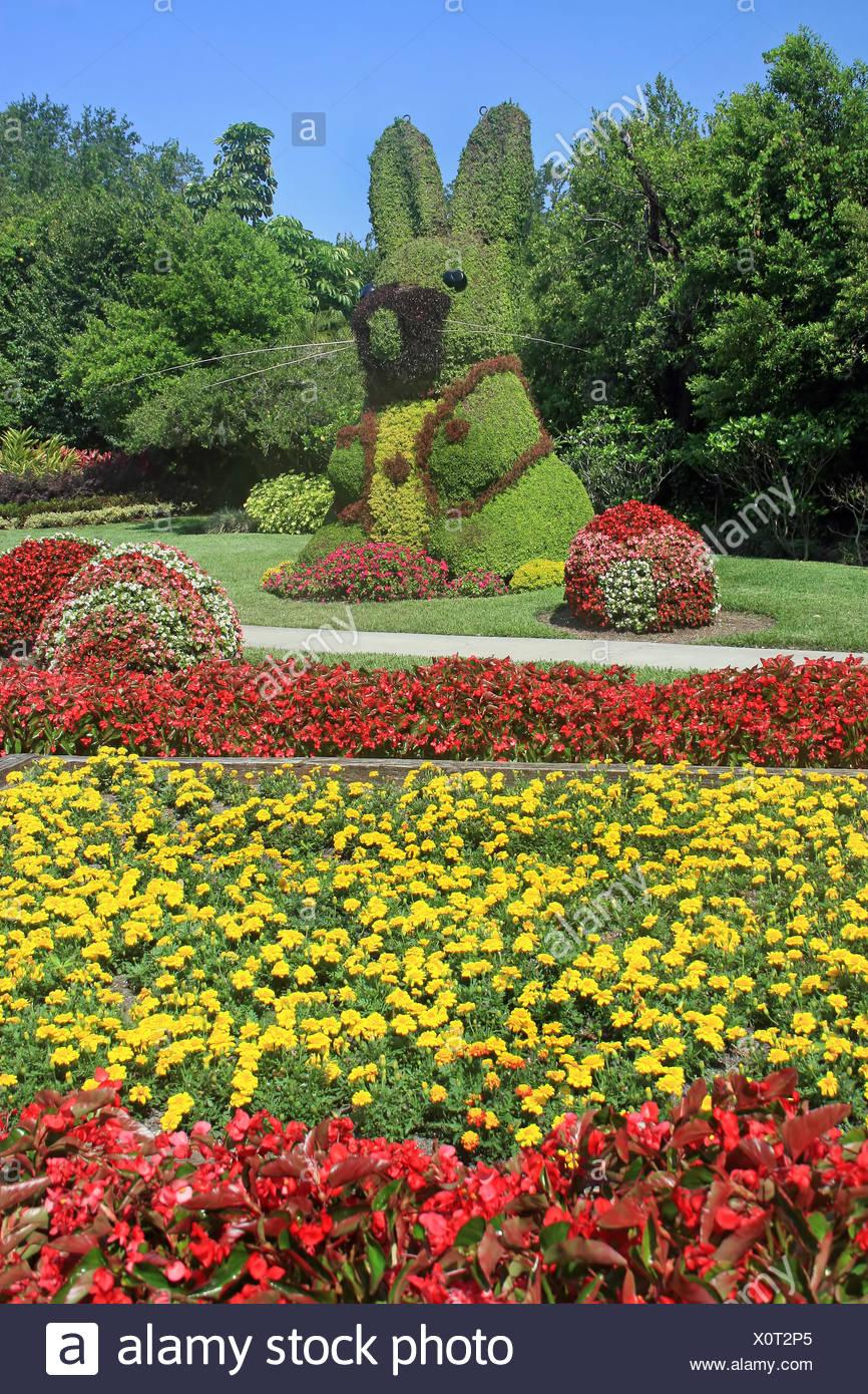 Garten Kaninchen Hase Hasen Baum Bäume Garten Blume Blumen