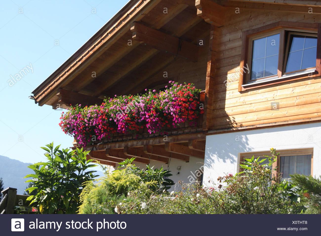 Blumenschmuck Privathaus Alpenregion Haus Wohn Haus Landlich