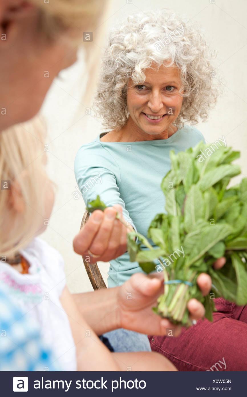 Reife Frau mit Tochter und Enkelin riechen Bund Minze im Garten Stockbild