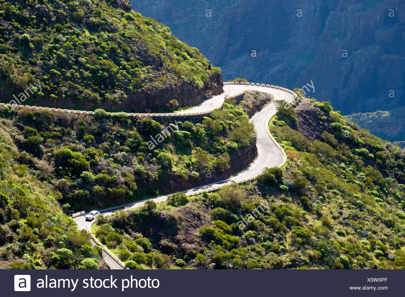 Bergstraße Bei Masca, Teno-Gebirge, Parque Rural de Teno, Teneriffa, Kanarische Inseln, Spanien Stockbild