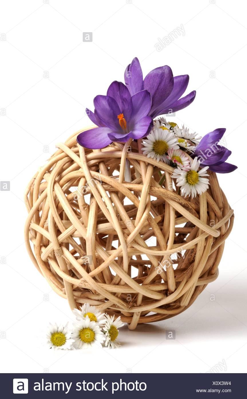 Gartendekoration Fruhjahr Fruhling Messenger Blumengarten