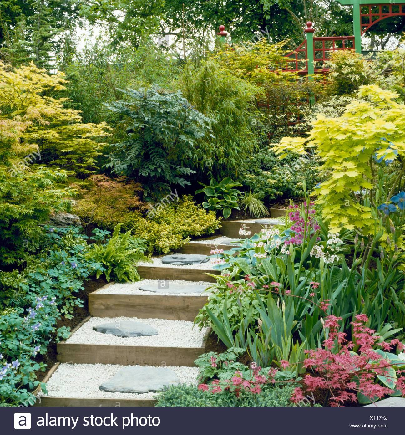 Japanischer Garten Mit Acers Und Bambus Jag034488 Stockfoto Bild