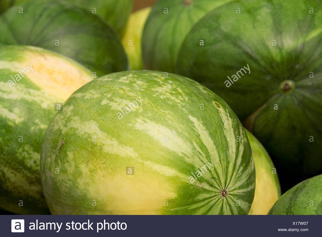 Frische, gesunde, grüne Wassermelonen Nahaufnahme Detail Stockbild