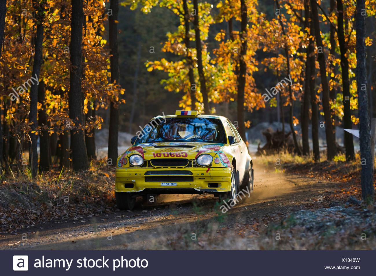 Toyota Corolla wrc, Lausitz Rallye, Motorsport, Sachsen, Deutschland, Europa Stockbild