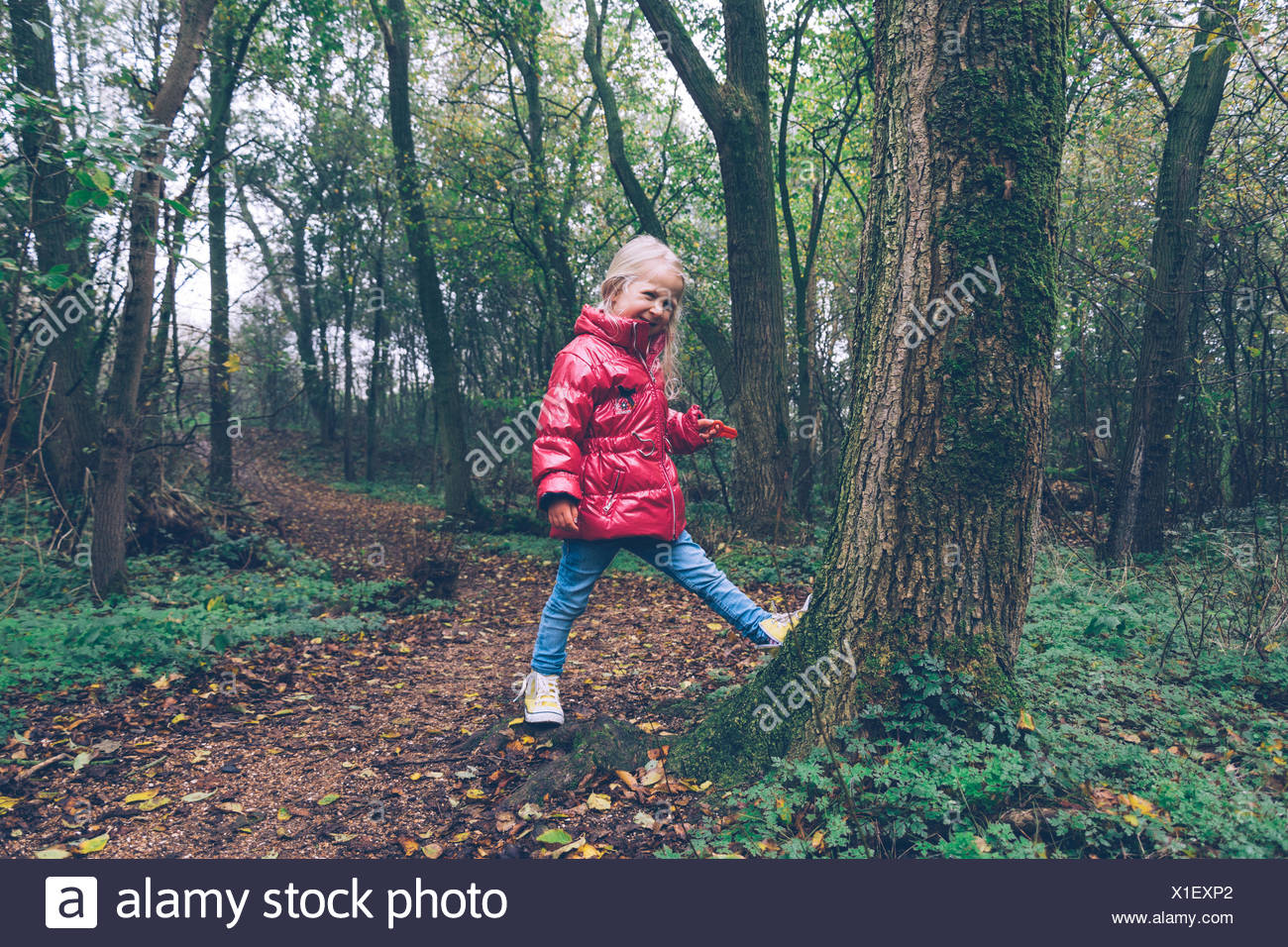 Mädchen in den Wald, Ritthem, Zeeland, Holland Flickschusterei Stockfoto