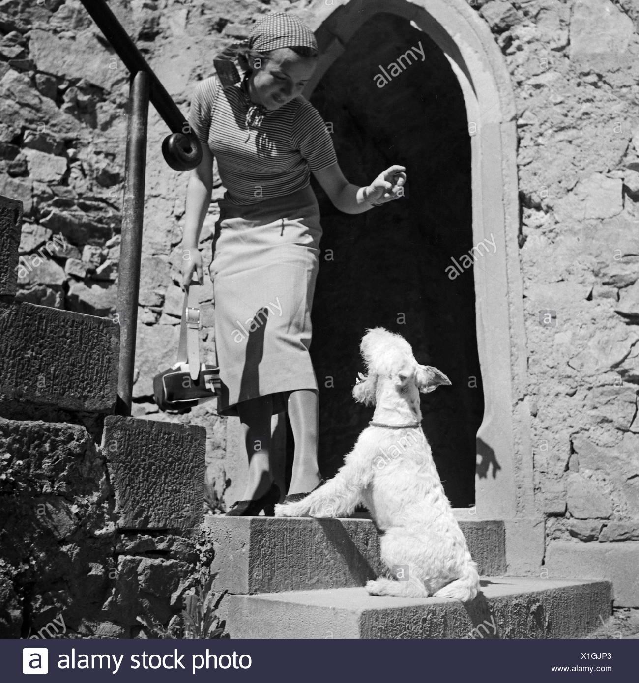 Eine Junge Frau Mit Dachmarke Hund, Deutschland, 1930er Jahre. Eine junge Frau mit ihrem Hund, Deutschland der 1930er Jahre. Stockbild