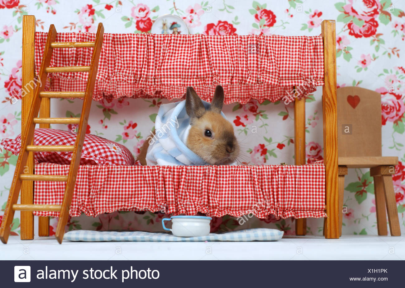 Etagenbett Für Puppenhaus : Puppenhaus stuhl stockfotos bilder alamy