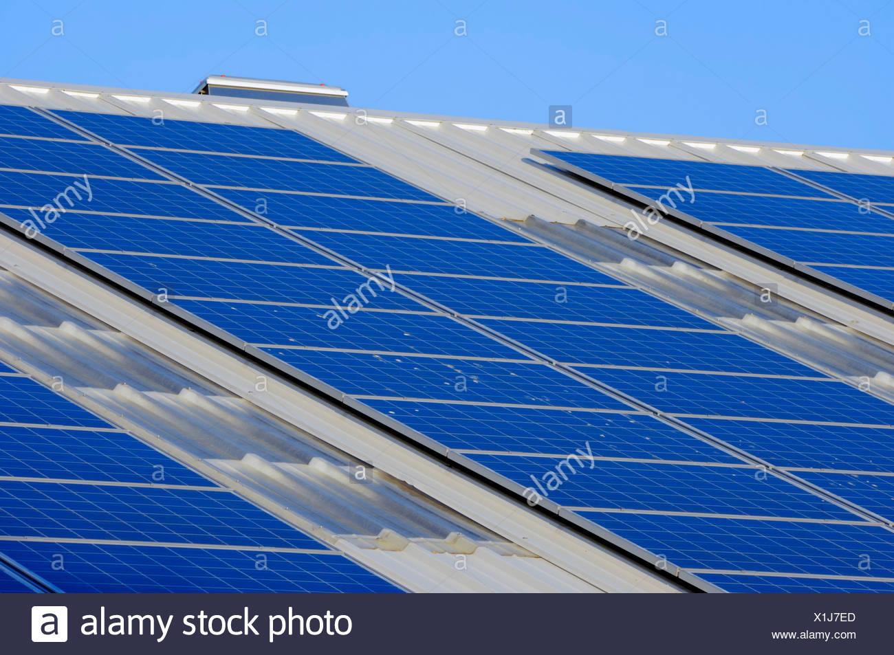 Photovoltaik-Anlage, Solarzellen, Sonnenkollektoren auf dem Dach eines Unternehmens, North Rhine-Westphalia, PublicGround Stockbild