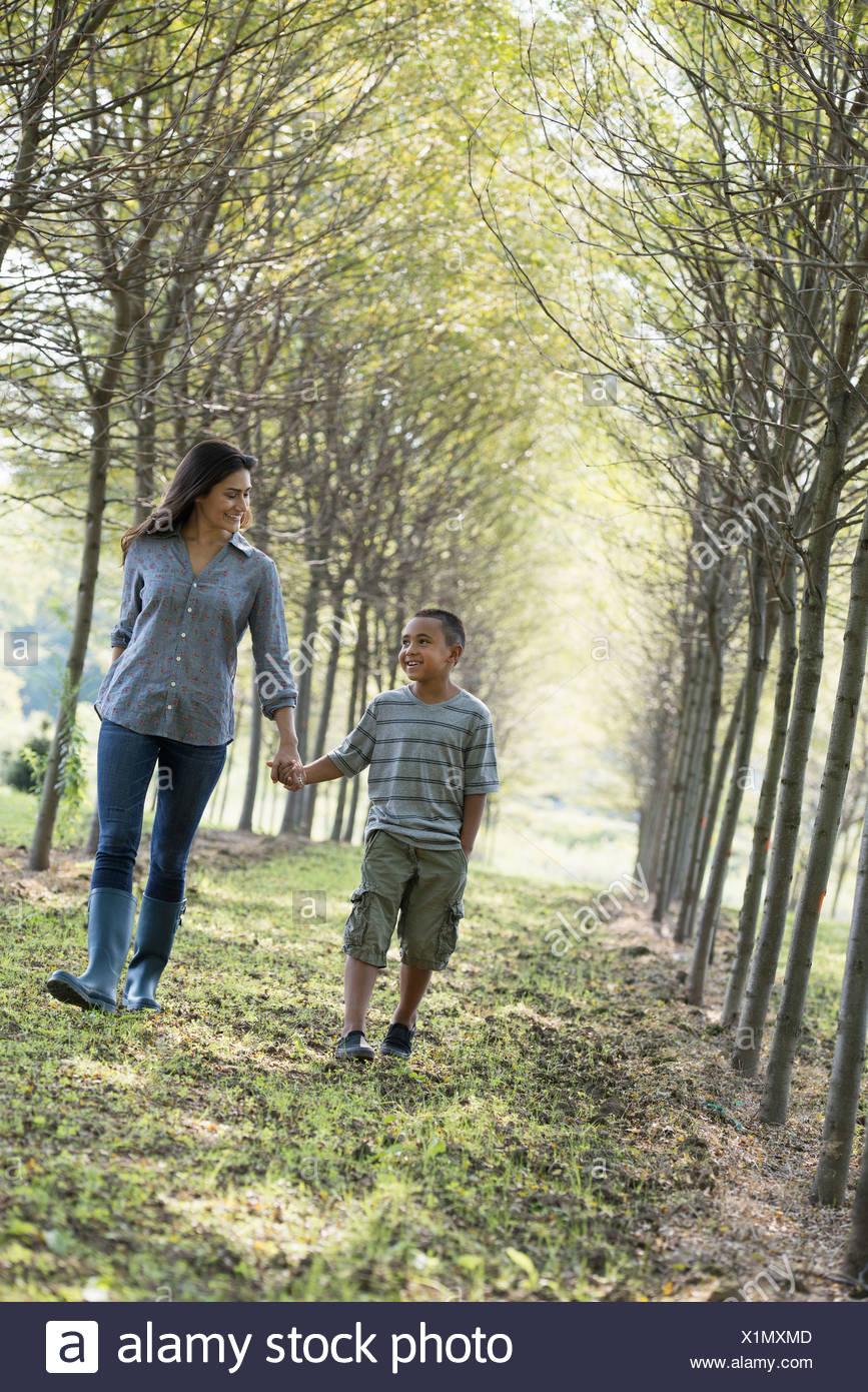 Eine Frau und ein kleiner Junge, Hand in Hand wandern in Wäldern. Stockbild