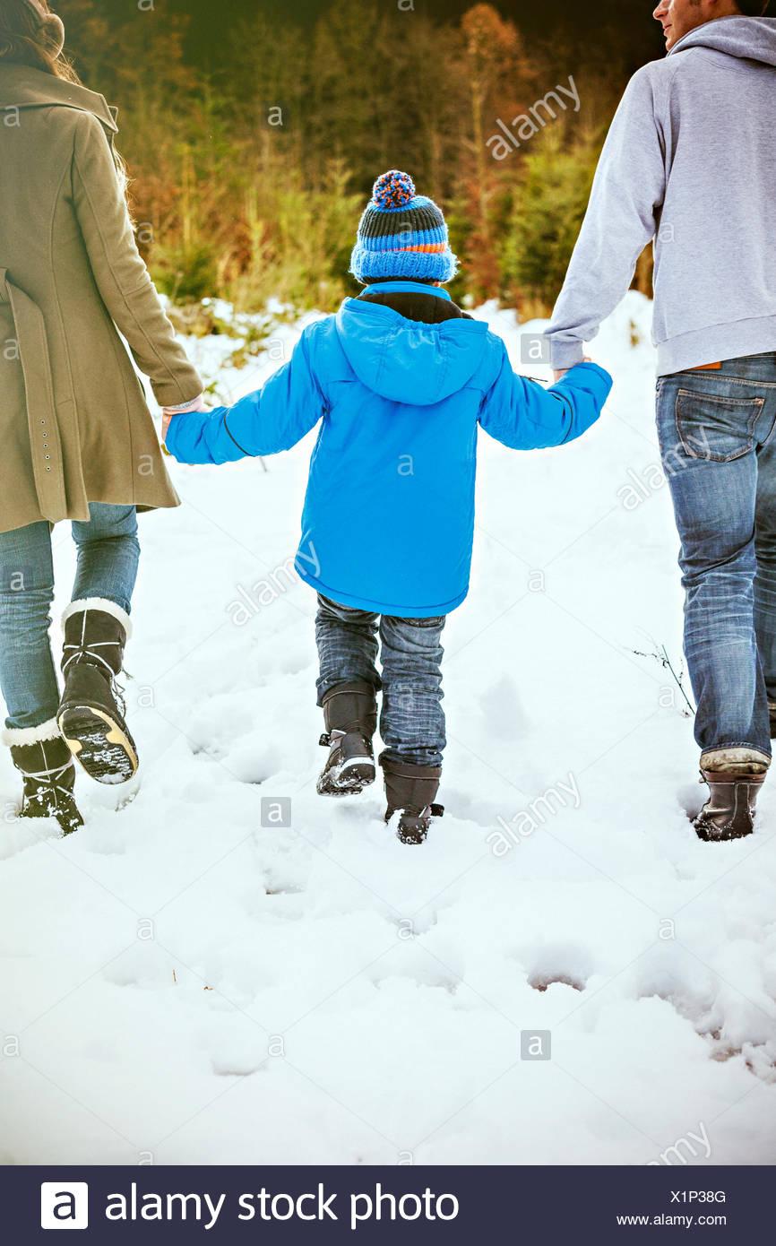 Eltern und Sohn auf der Suche nach den perfekten Weihnachtsbaum Stockbild
