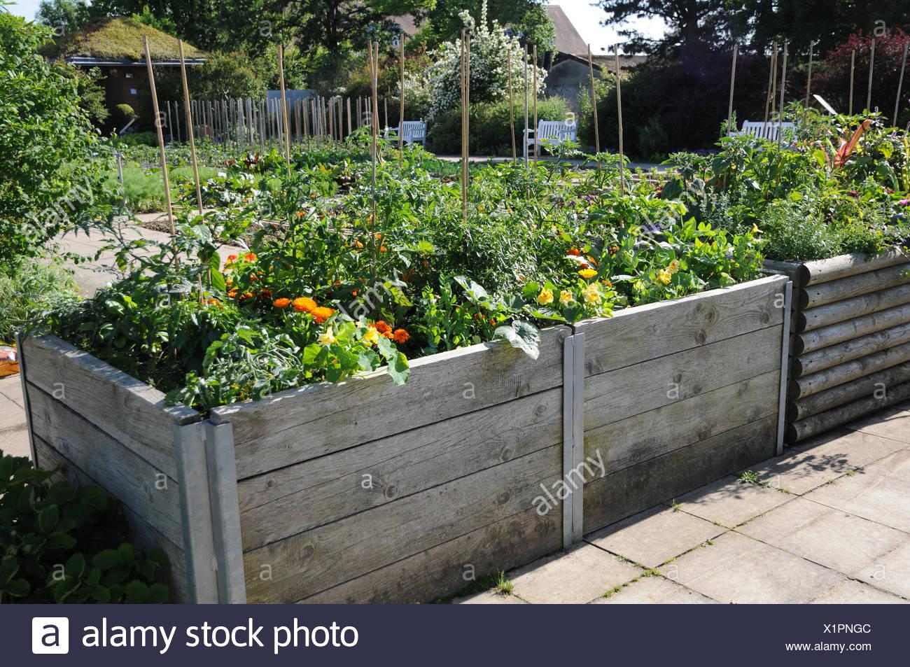 Hochbeet Mit Gemuse Und Blumen Stockfoto Bild 276480412 Alamy