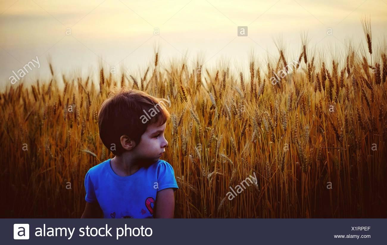 Mädchen stehen auf Ernte Gebiet gegen klaren Himmel Stockfoto