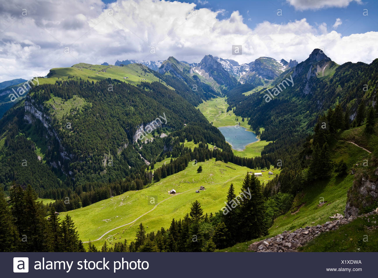 Blick auf den Saemtisersee See und die Berge Alpsteingebirge, Bruelisau, Kanton Appenzell Innerrhoden, Schweiz, Europa Stockbild
