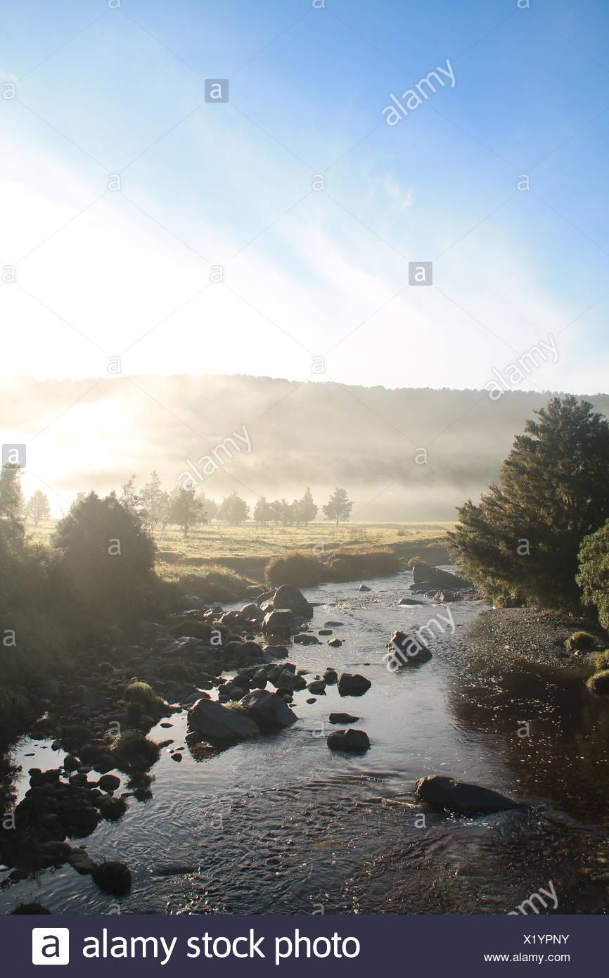 Lake Matheson, Neuseeland Stockbild