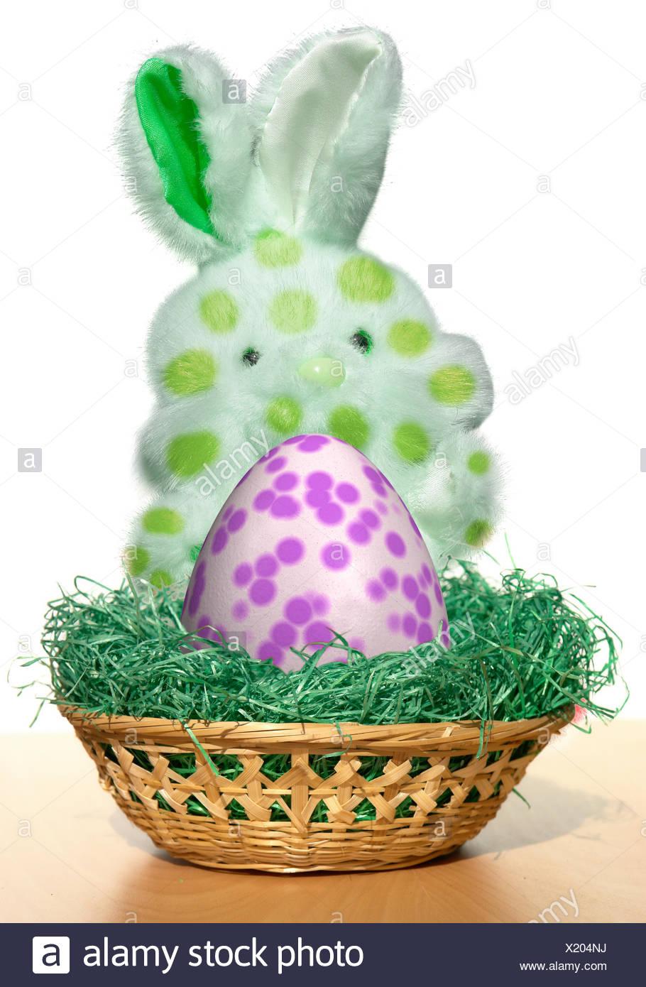 Witz Affinität Witzig Ostern Hase Nisten Bruder Osterhasen