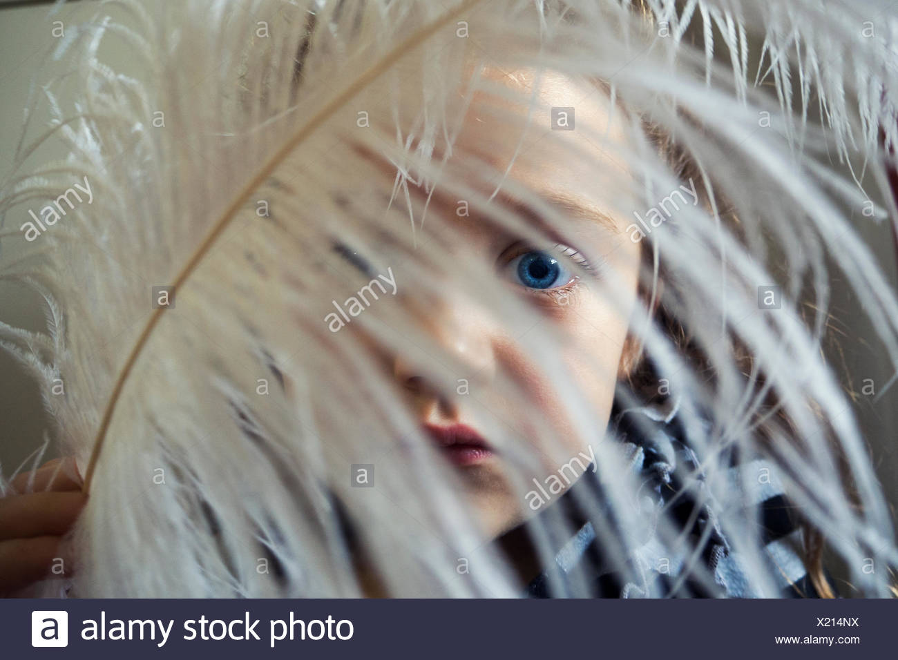 Mädchen mit einer Feder vor ihr Gesicht Stockbild