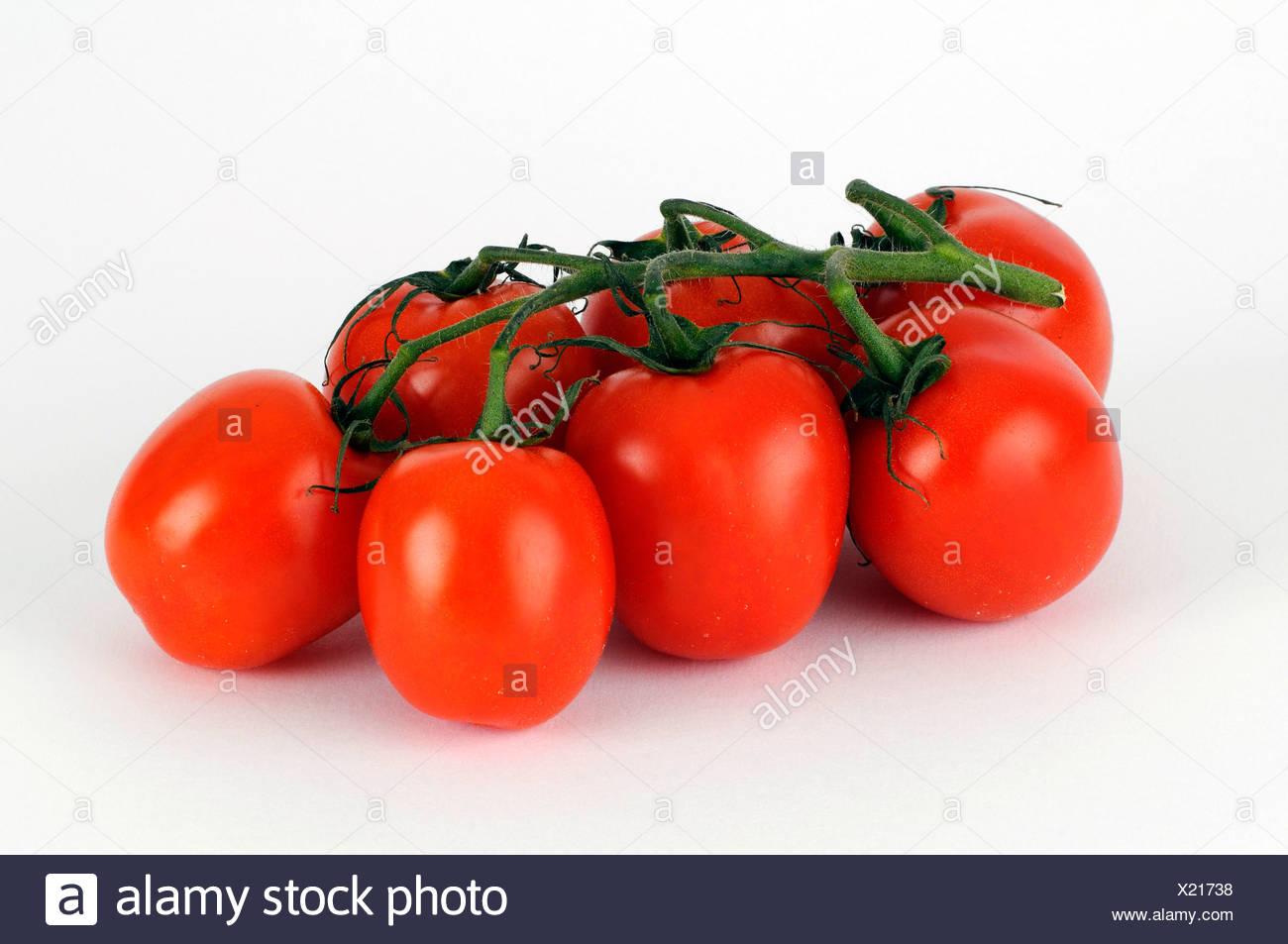 Truss Tomaten Stockbild