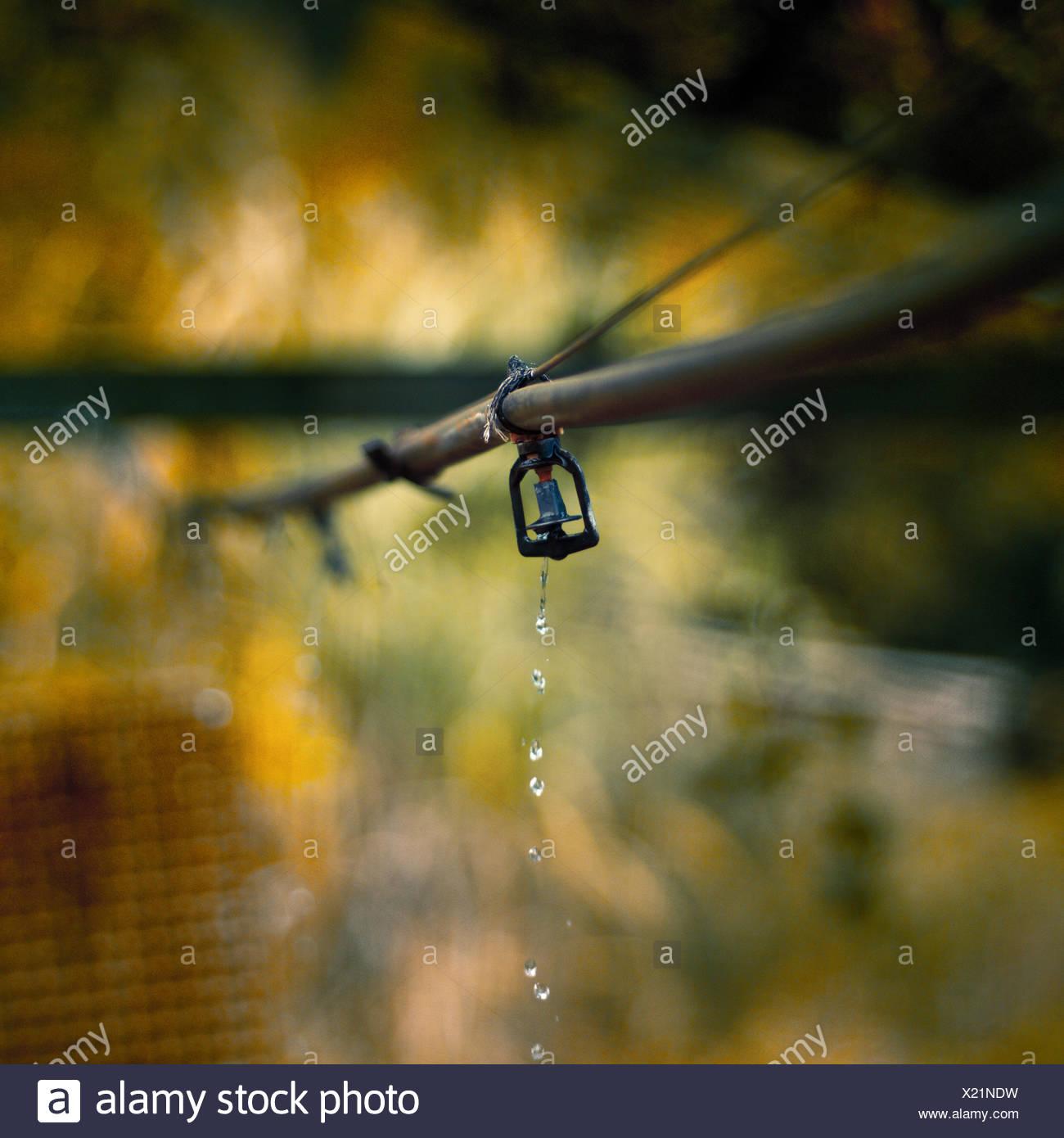Nahaufnahme von Outdoor-sprinkler Stockbild