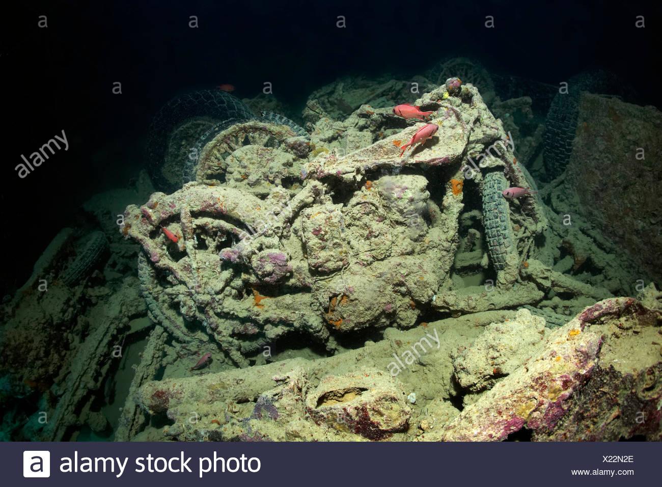 British Small Arms BSA M-20 Motorrad, Ladung auf das Wrack der SS Thistlegorm, Rotes Meer, Shaab Ali Sinai-Halbinsel, Ägypten Stockbild
