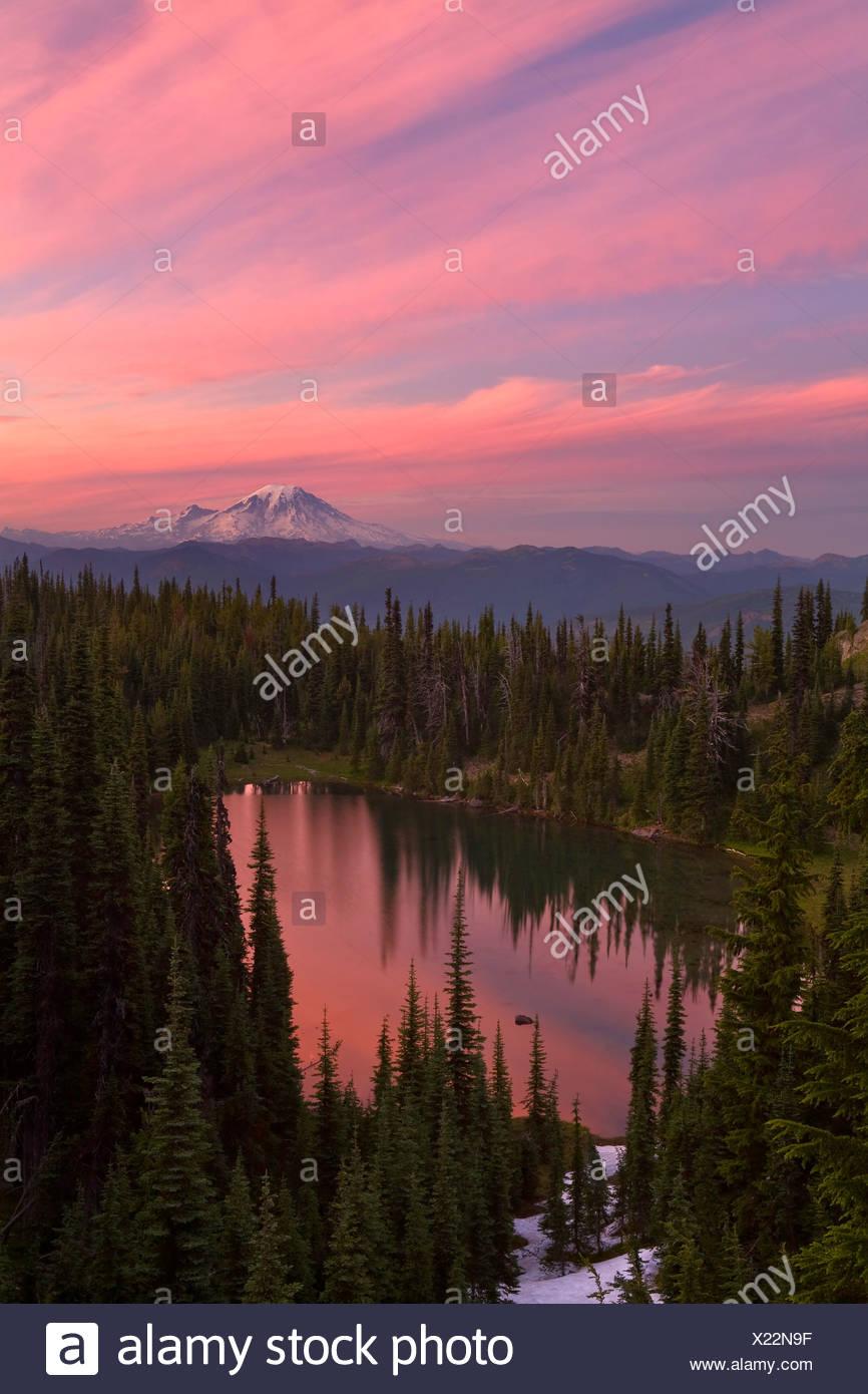 "USA, Vereinigte Staaten, Amerika, Mount Adams, Berg, Vulkanisch, Vulkan, ""Sonnenaufgang"", Sommer, Stimmung, Stimmungsvoll, Gifford Stockbild"