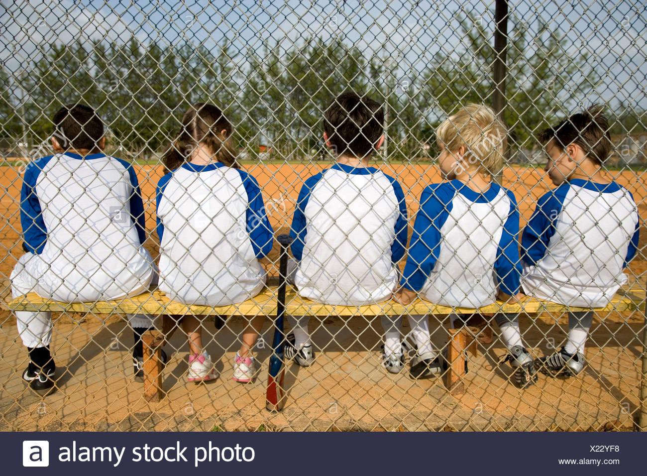 deutsche baseball liga