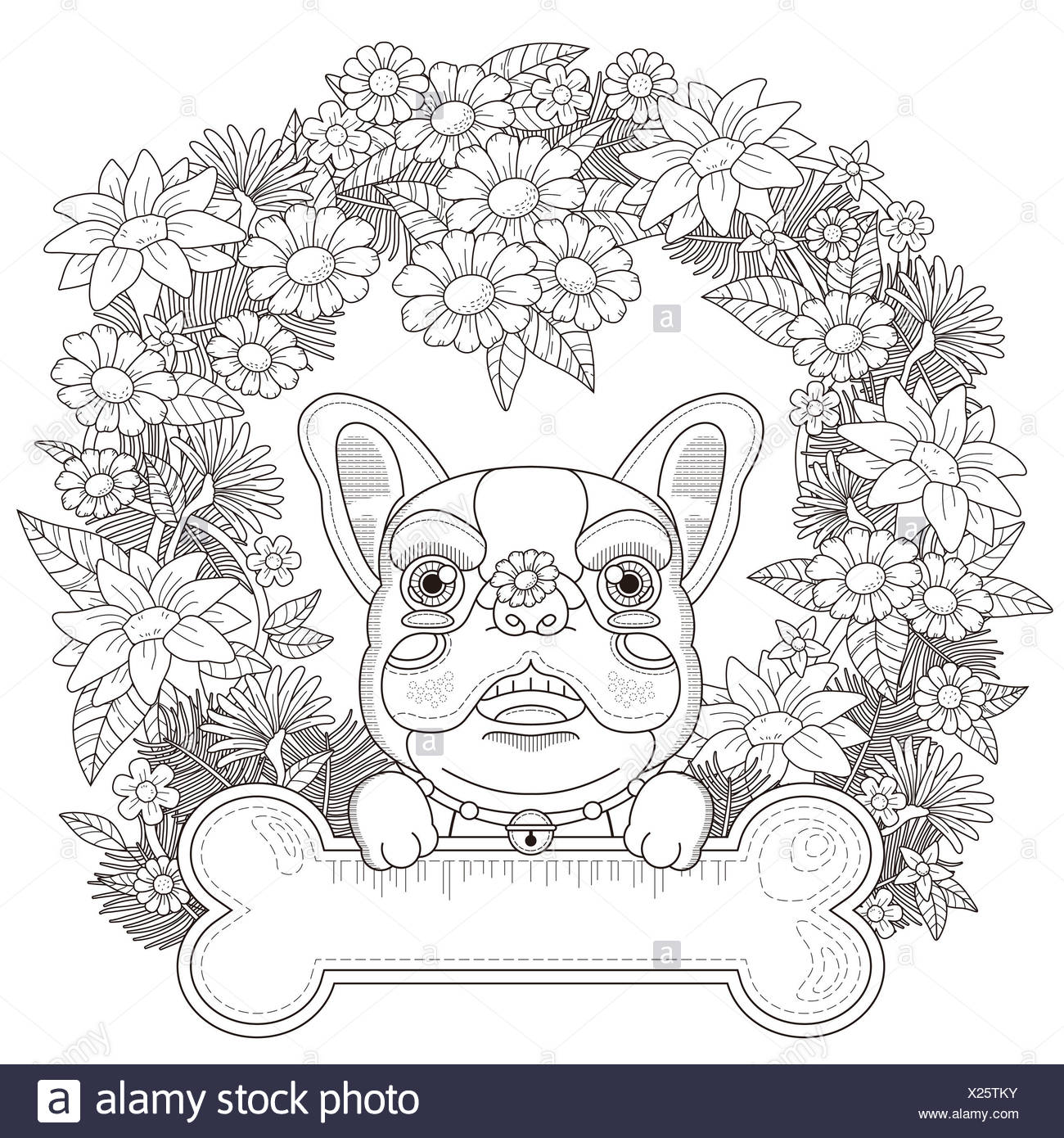 Black Outline Drawing Dog Isolated Stockfotos & Black Outline ...
