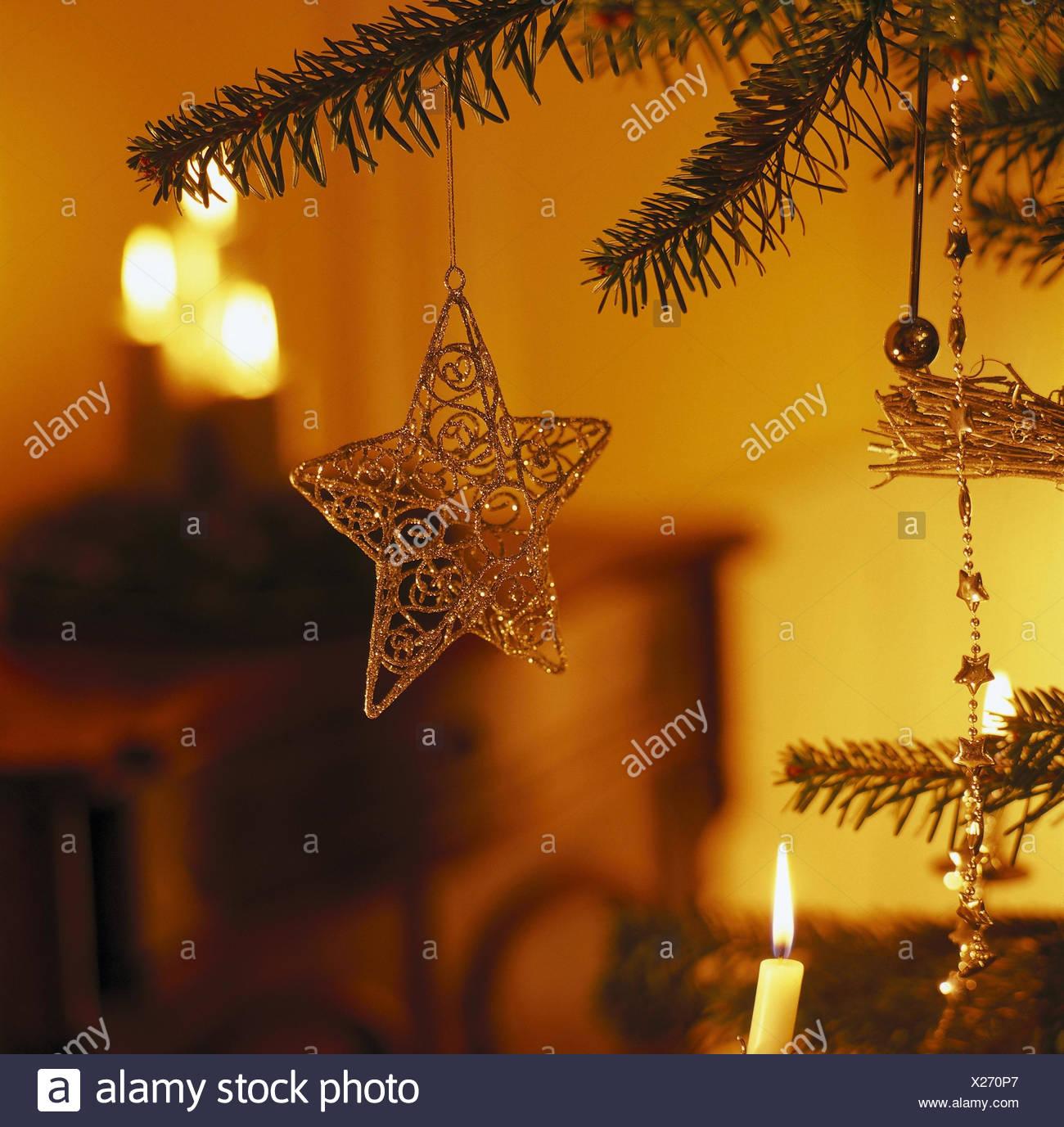 Sterne Für Weihnachtsbaum.Weihnachtsbaum Detail Sterne Weihnachten Stillleben