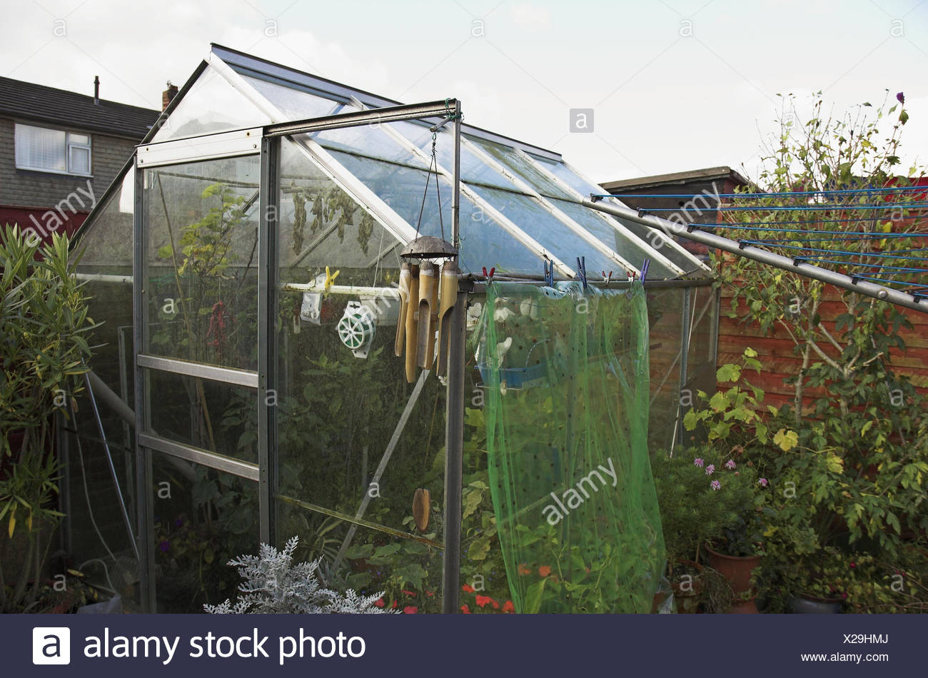 Haus Im Gewächshaus garten gewächshaus grün haus glas glashaus mikro klima