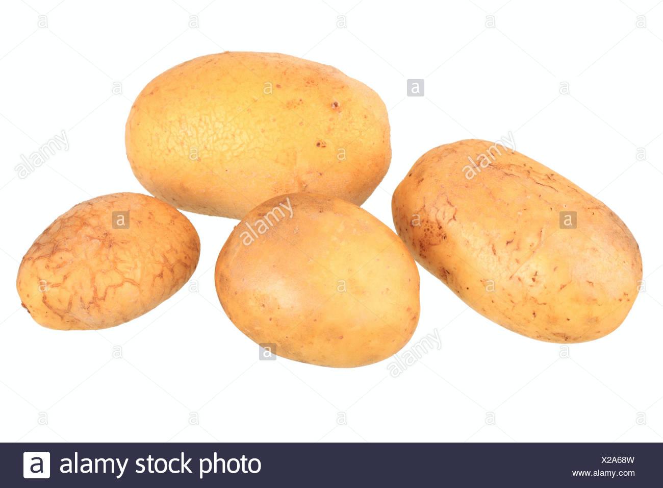 Kartoffeln, Talent-Vielfalt Stockbild