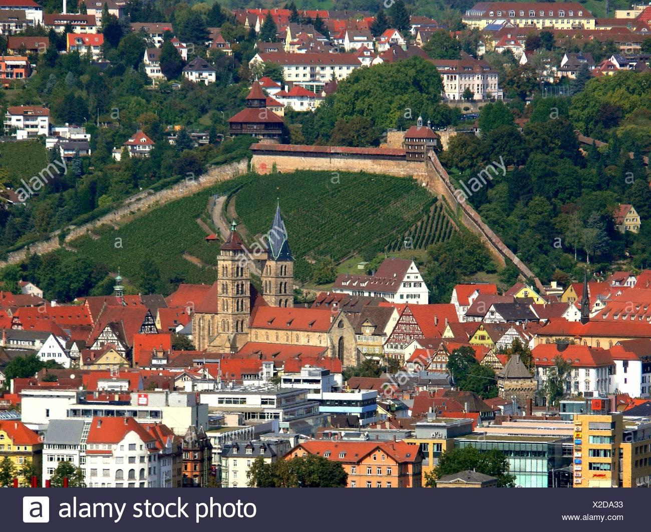 Weinberge Stadtbild Übersicht totale Schloss Burg Mittelalter esslingen Stockbild