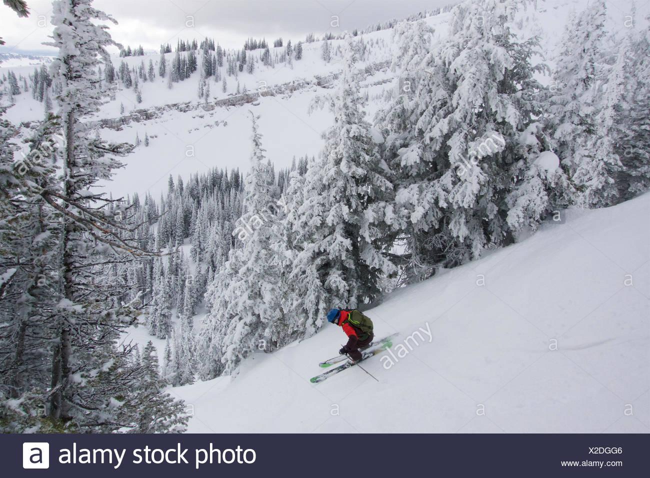 Ein jugendlich Junge Skifahren mit rime Bäume in den Bergen an einem bewölkten Tag abgedeckt. Stockbild