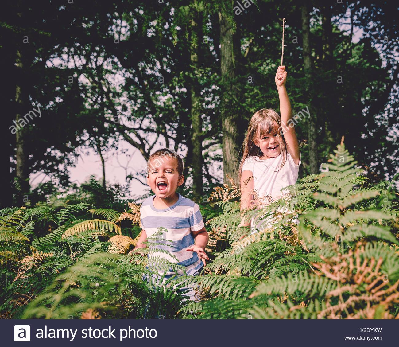 Zwei glückliche Kinder springen von hinter der Farne im Wald Stockbild