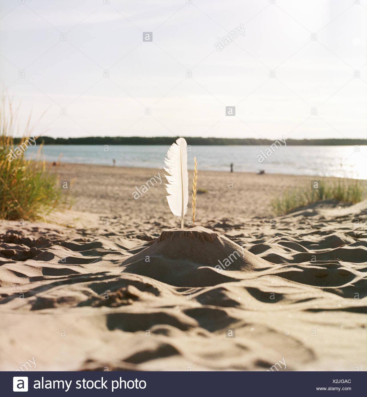 Finnland, Pori, Yyteri, Sandburg mit Feder am Sandstrand Stockbild