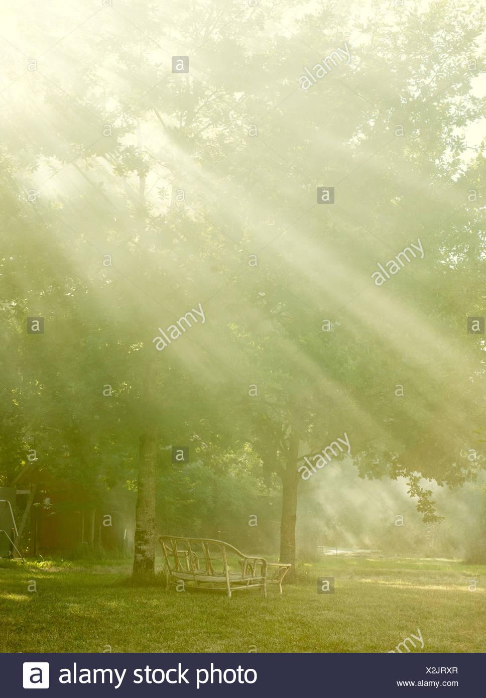 Gartenmöbel und Bäume in Sonnenstrahlen Stockbild
