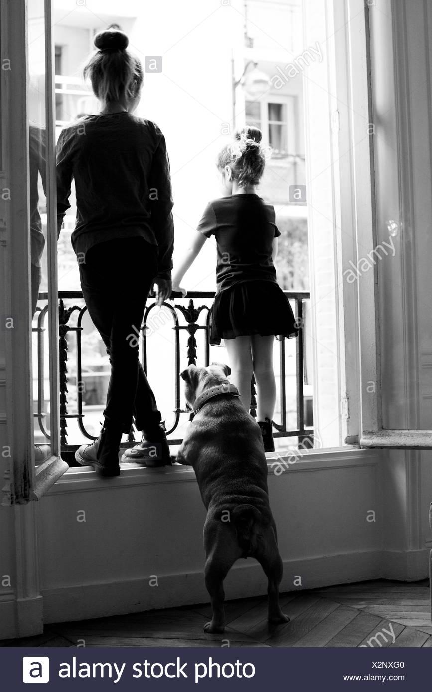 Blick aus Fenster mit Hund, Schwestern Rückansicht Stockbild