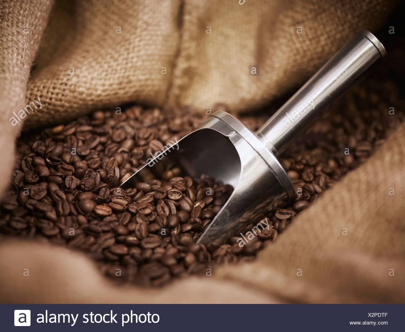 Leinensack mit Schaufel und Kaffeebohnen Stockbild