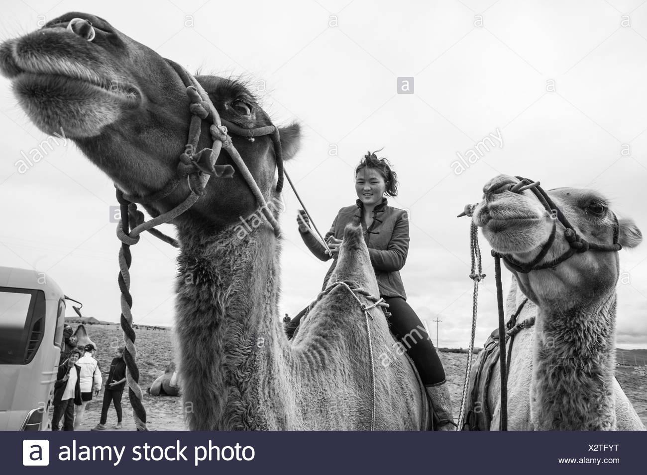 Mongolin reiten Kamel, Kharakhorin, Mongolei Stockfoto