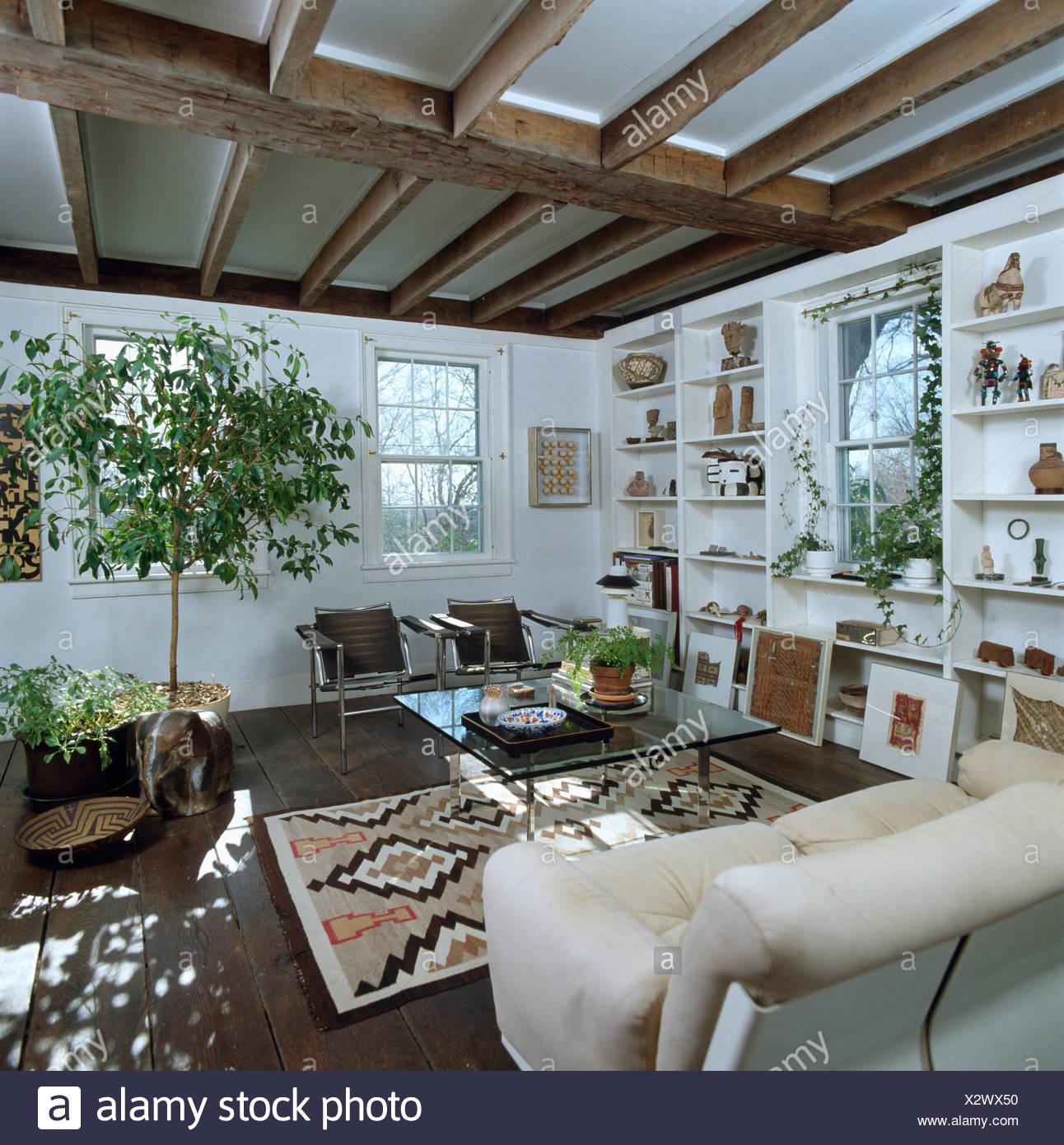 Kleiner grüner Baum in weißen Land Wohnzimmer mit Fenster zwischen ...