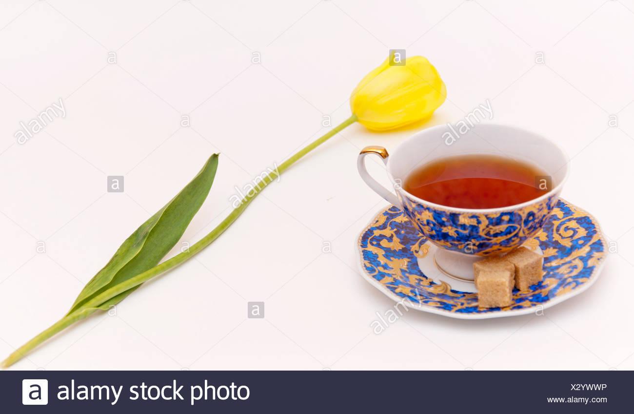 Tasse Tee und Feder Blume Stockbild