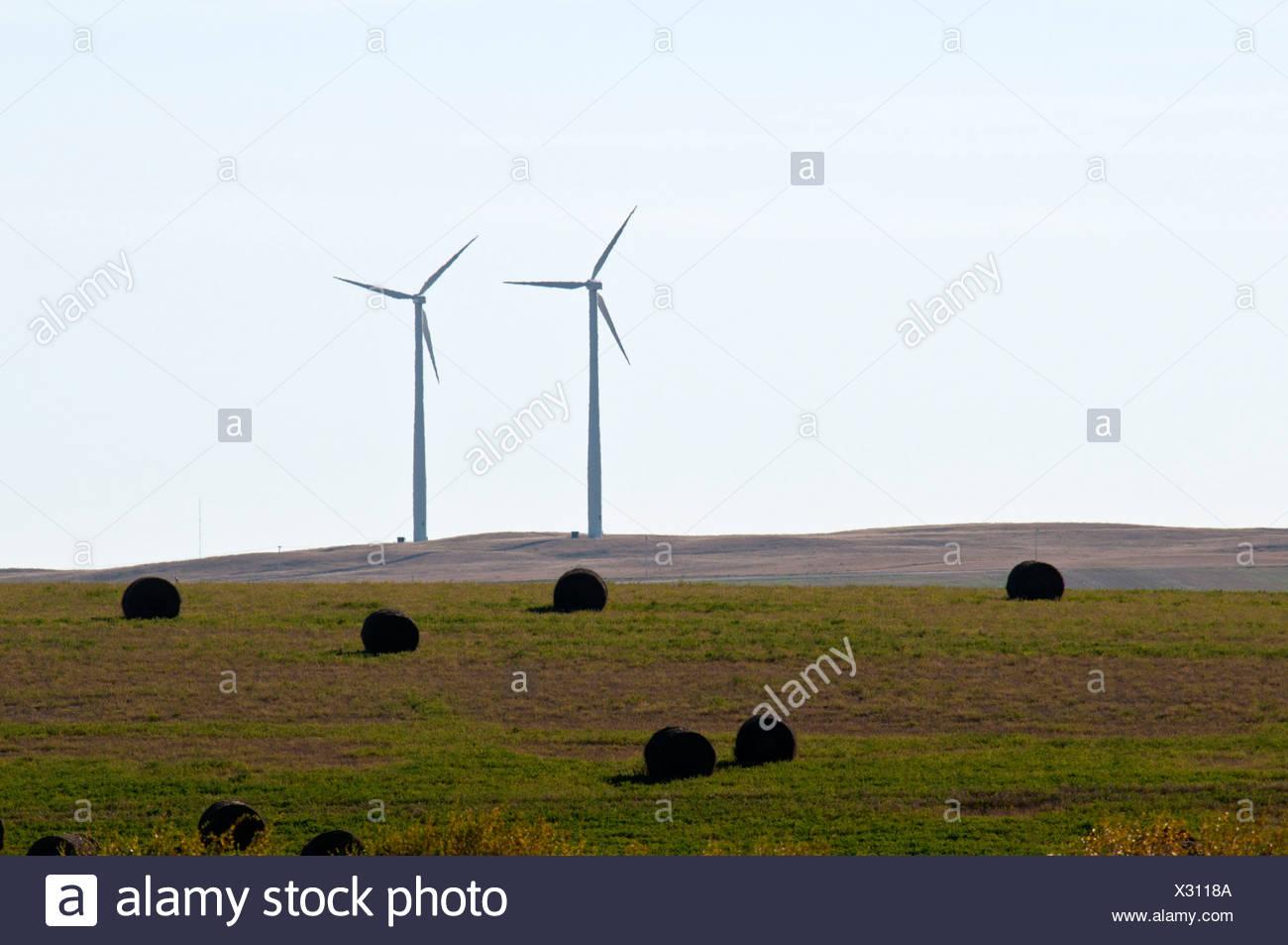 Sonne zu überbrücken, Wind Power Project, Gull Lake, Saskatchewan, Kanada, Wind, Kraft, Energie, Nordamerika, Feld, Generatoren Stockbild