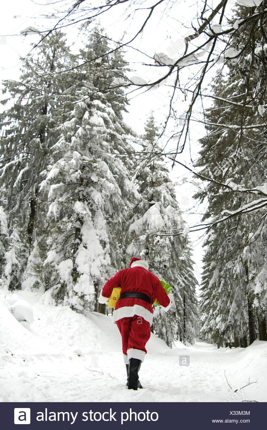 Winter Holz, Weihnachtsmann, Geschenke, Carry, zurück Blick ...