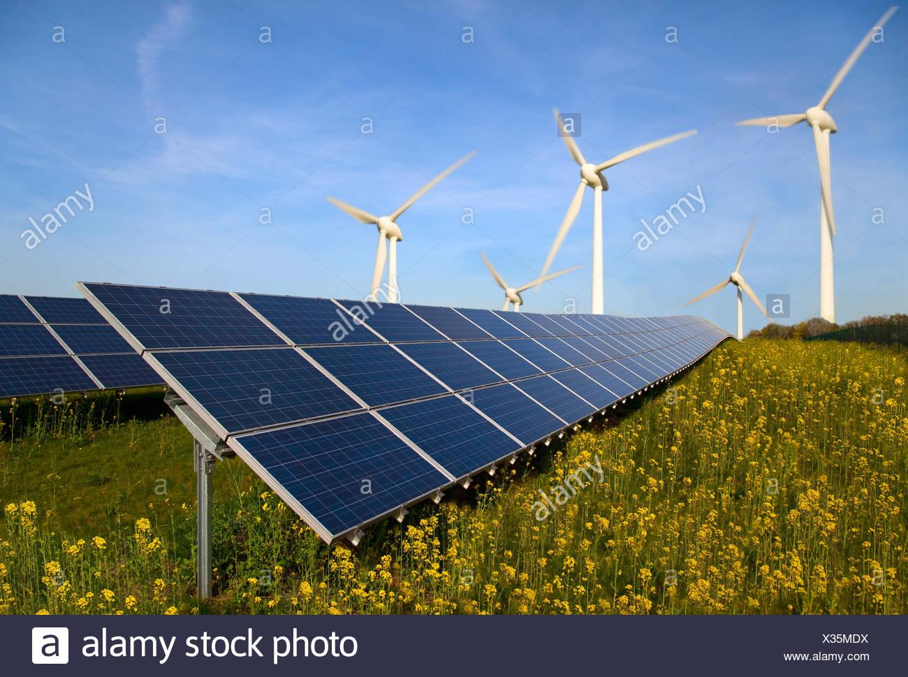 Solarzellen und Windräder im Bereich Stockbild