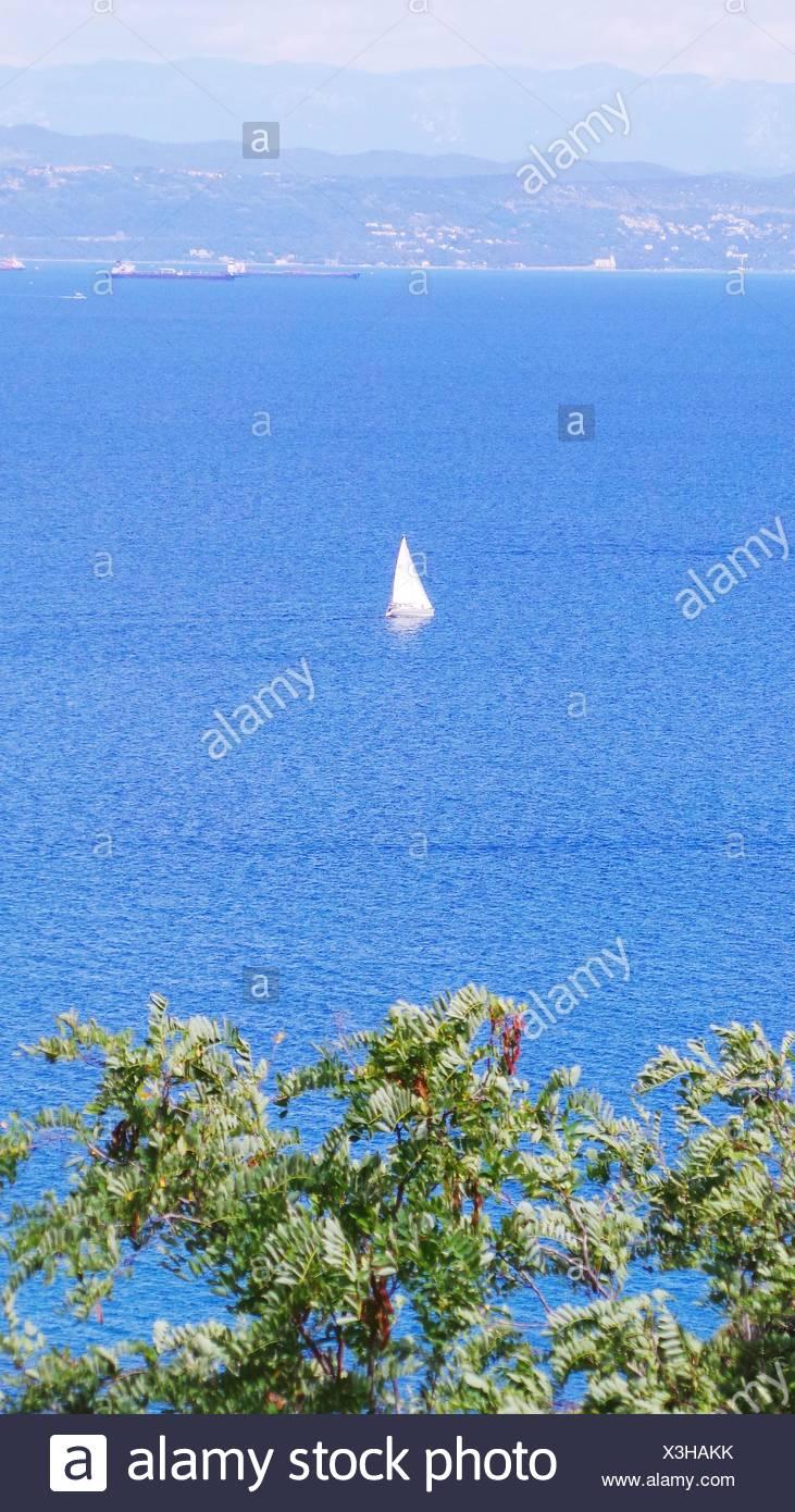 Boot im Meer segeln Stockbild