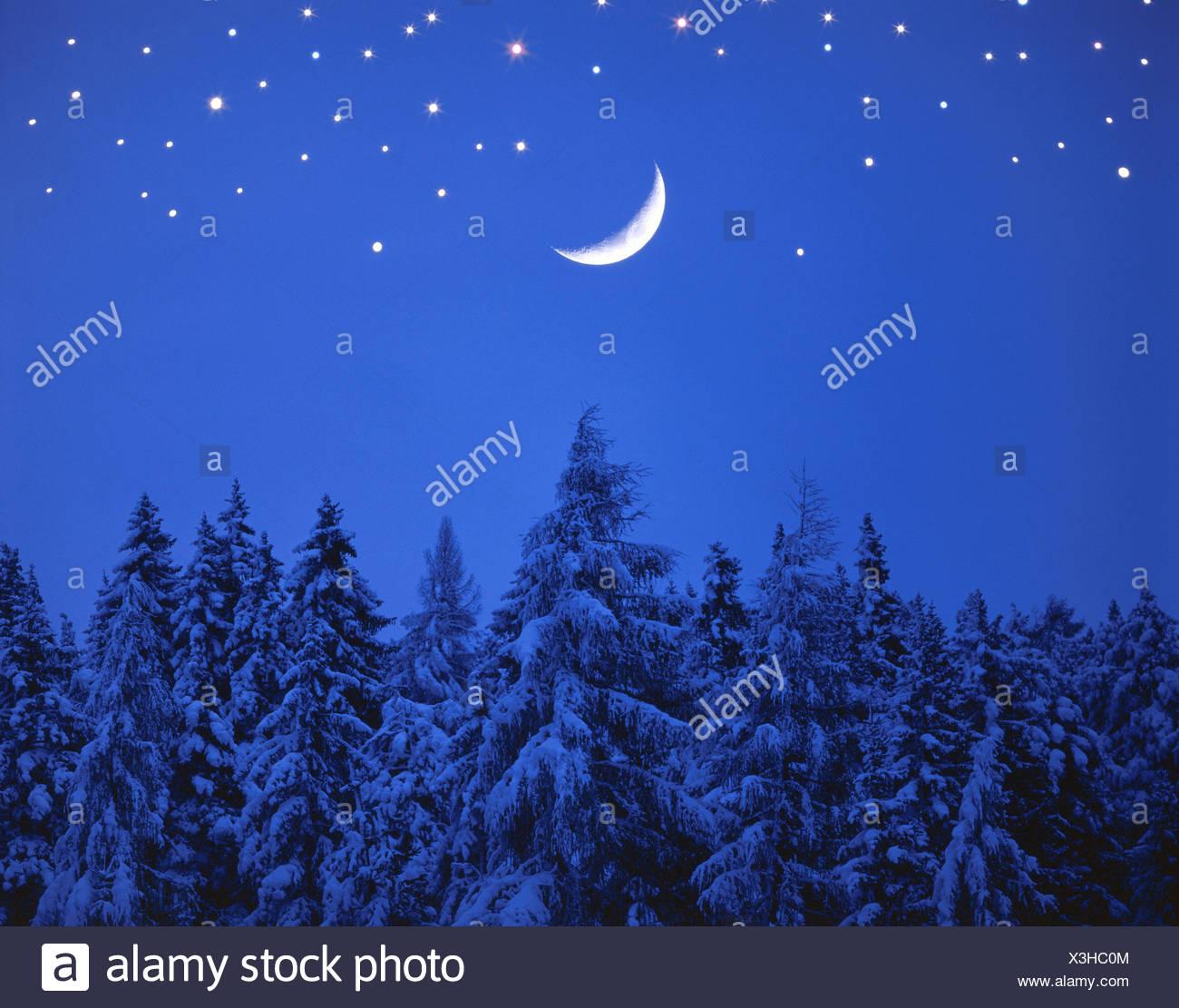 Wunderbar Mond Färbung Seite Fotos - Entry Level Resume Vorlagen ...