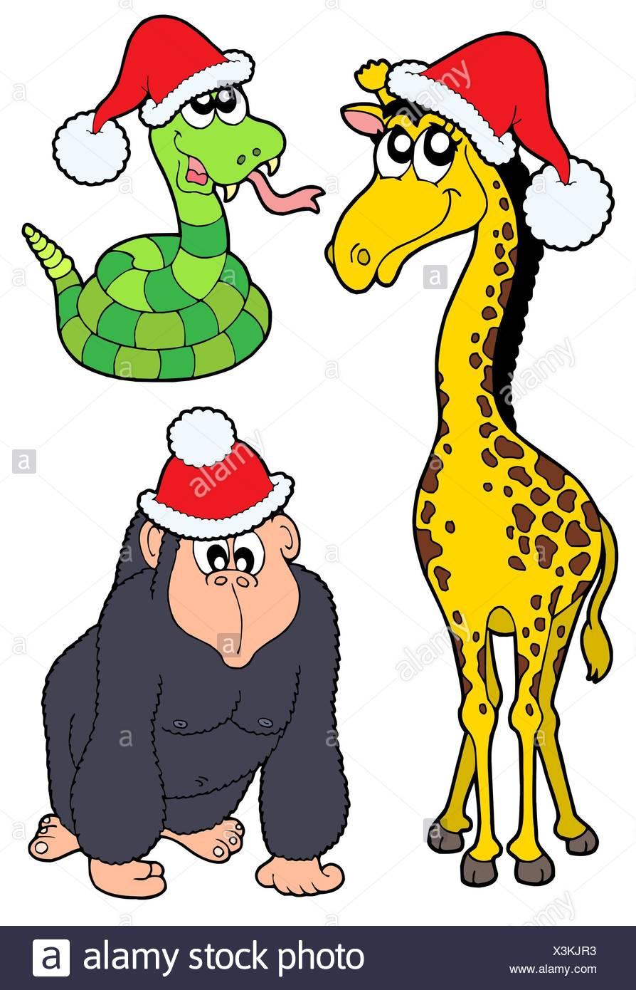 Schlange-Giraffe-Weihnachten-Klausel Weihnachten x-mas Lachen Lachen ...