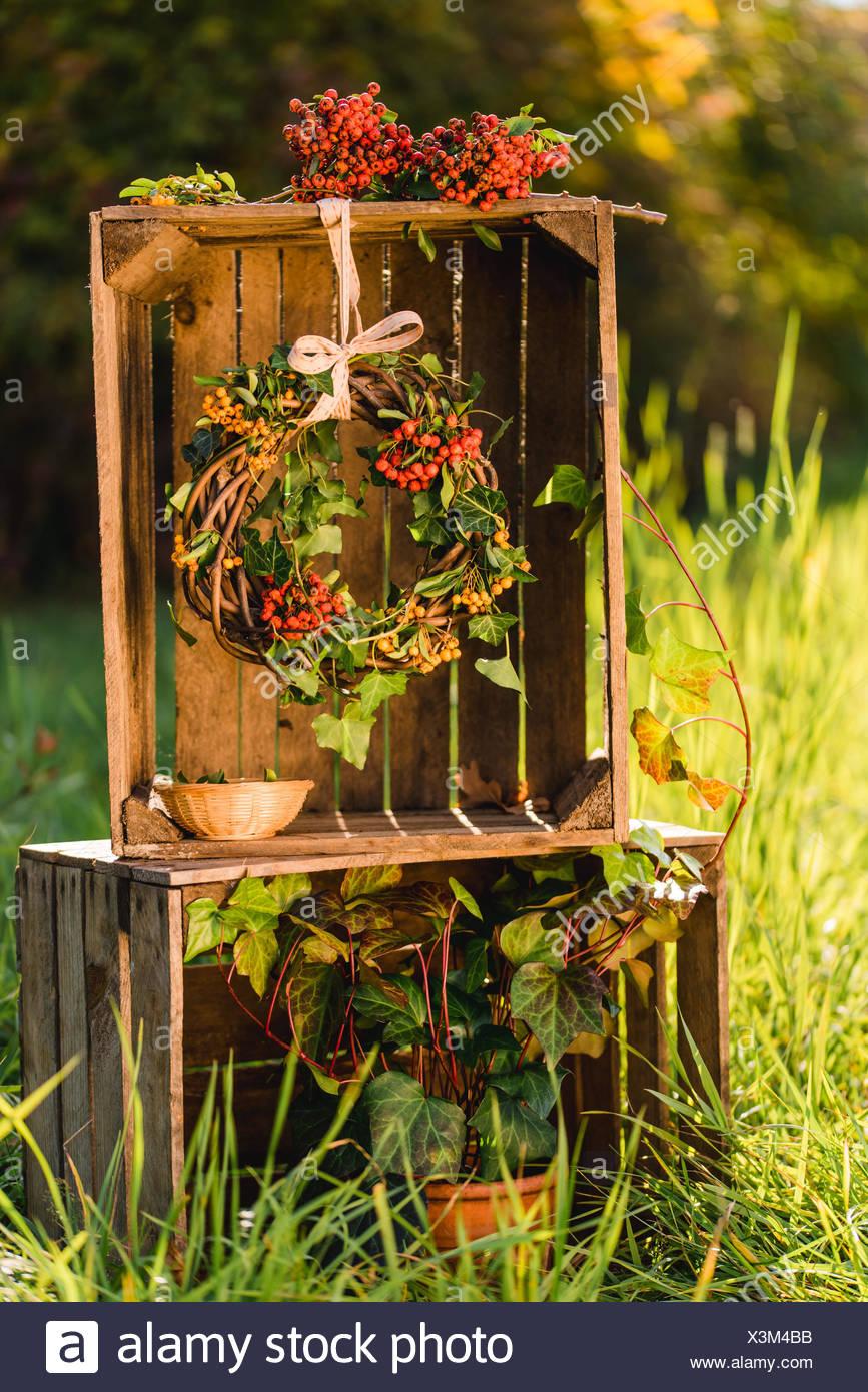 Garten Holzkisten Dekoration Herbstlichen Kranz Efeu Stockfoto