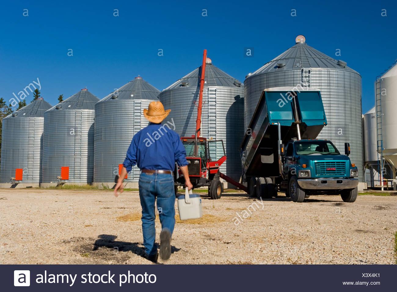 Bauer mit einem Lunchpaket geht auf seinem LKW beim Entladen Korn in Lagerplätze in der Nähe von Dugald, Manitoba, Kanada Stockbild