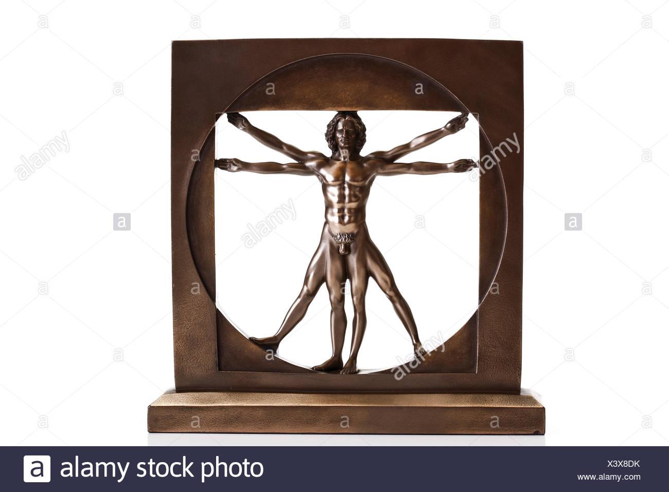 Vitruvian Man By Leonardo Da Vinci Stockfotos & Vitruvian Man By ...