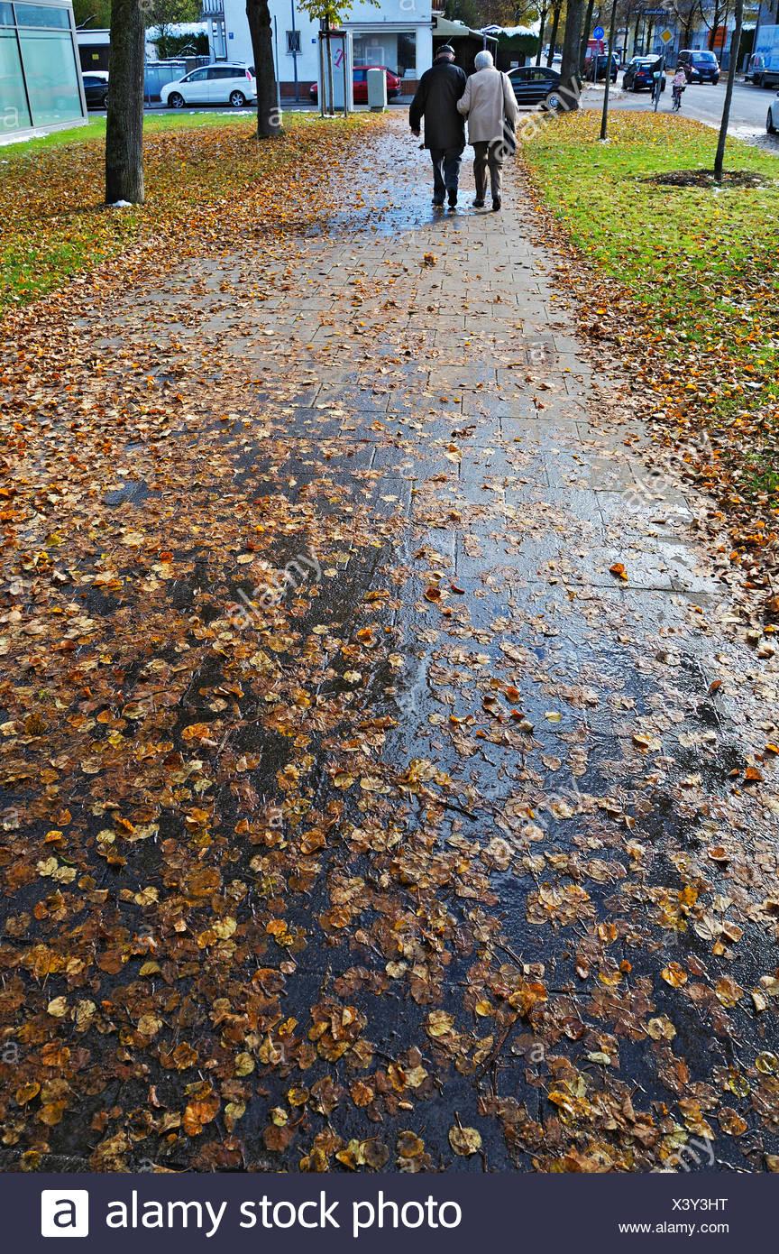 Nasses Herbstlaub auf einem Bürgersteig, München, Bayern Stockbild