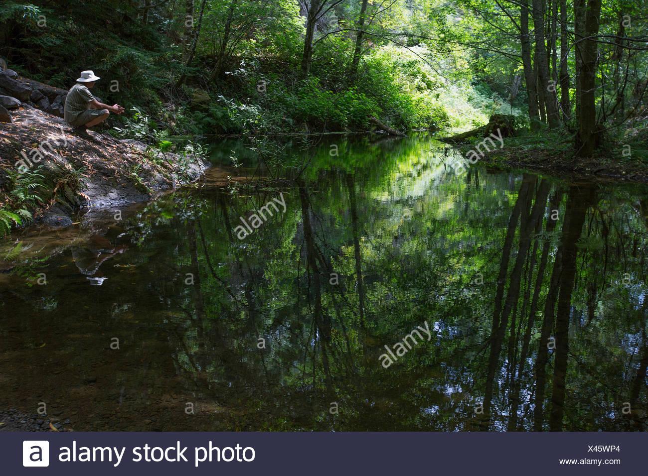 Mann bei ruhiger See im Wald hocken Stockbild